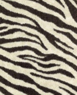 Native Zebra