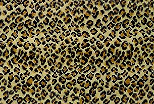8095 True Leopard