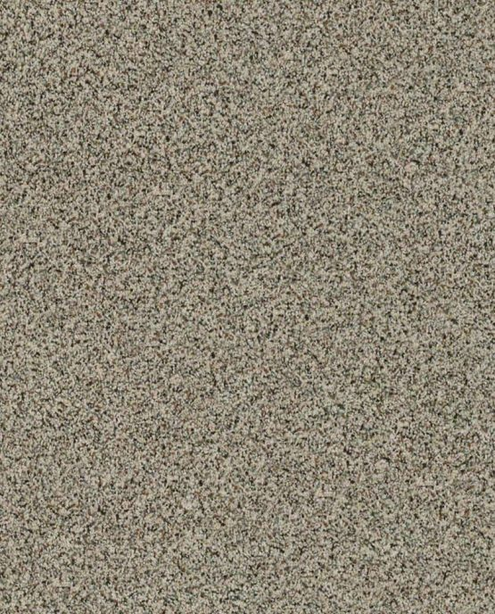 SHAW Angora Classic II WALNUT SHALE frieze carpet
