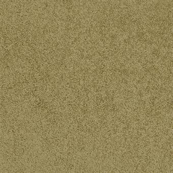 772 Teton