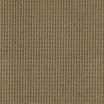 Bandala Carpet By Masland 25 Colors Myers Carpet Of Dalton