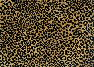 stock animal prints by stanton lake jaguar 86715. Black Bedroom Furniture Sets. Home Design Ideas