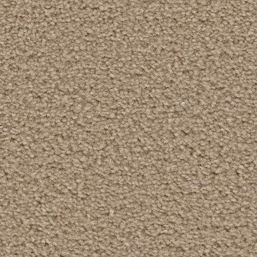 Applause Carpet By Dreamweaver 8 Colors Myers Carpet