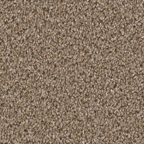 Broadcast Carpet By Dreamweaver 18 Colors Myers Carpet