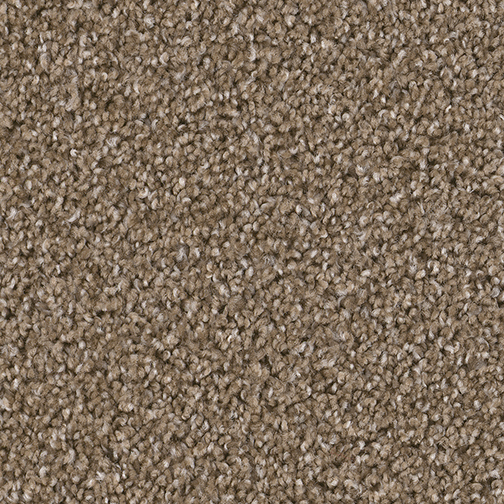 Broadcast Carpet By Dreamweaver 18 Colors Myers Carpet