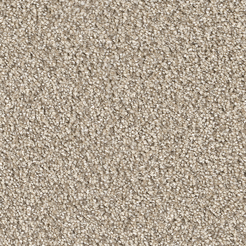 Cape Cod Carpet By Dreamweaver 22 Colors Myers Carpet