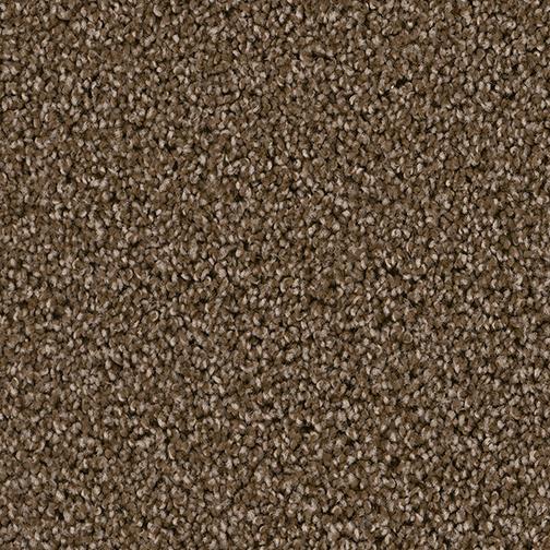 540 Black Walnut