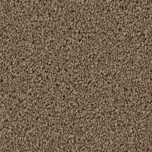 Cedar Creek Carpet By Dreamweaver 15 Colors Myers