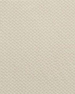 036 Ivory