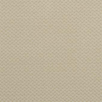 079 Canvas