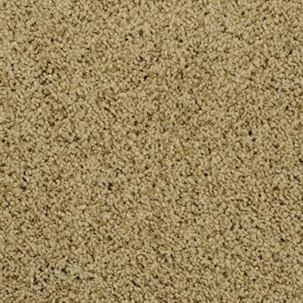 Shangri La Carpet By Masland 25 Colors Myers Carpet Of