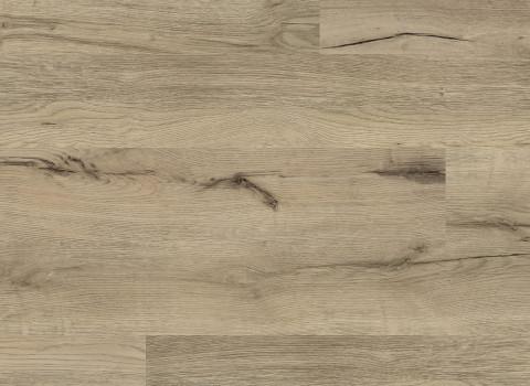 VV022-00808 Augustine Oak