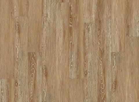 VV022-00812 Bruges Oak