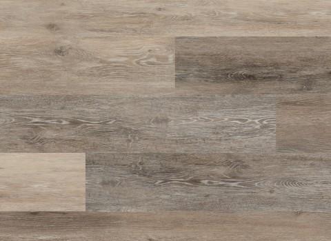 Blackstone Oak VV024-00707