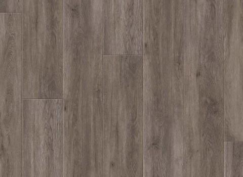 VV035-00907 Blackburn Oak