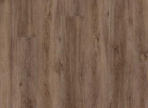 VV035-00908 Fairweather Oak