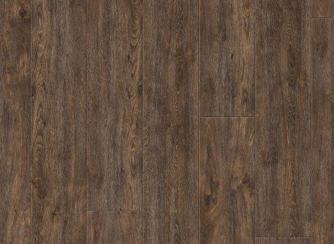 VV035-00910 Colima Oak