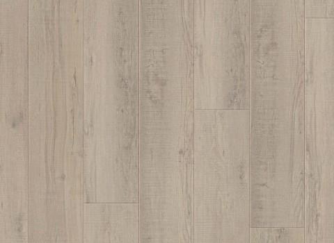 VV035-00913 Applachian Pine