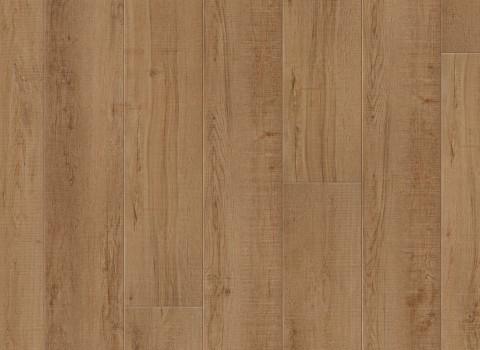 VV035-00915 Waddington Oak