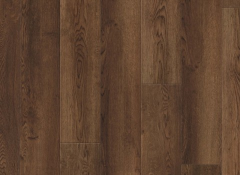 VV035-00916 Venado Oak