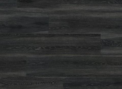 VV034-00601 Gotham Oak
