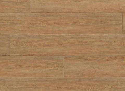 VV034-00615 Highlands Oak