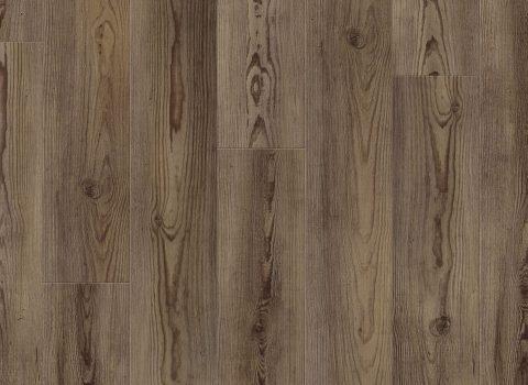 VV012-00755 Angola Pine
