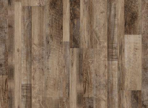VV012-00757 Marianas Oak