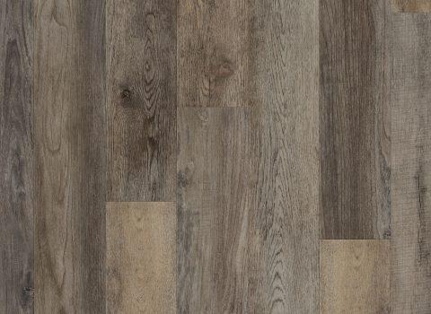 VV012-00759 Galathea Oak