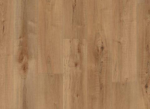 VV012-00760 Manila Oak