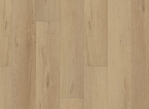 VV012-00761 Calypso Oak