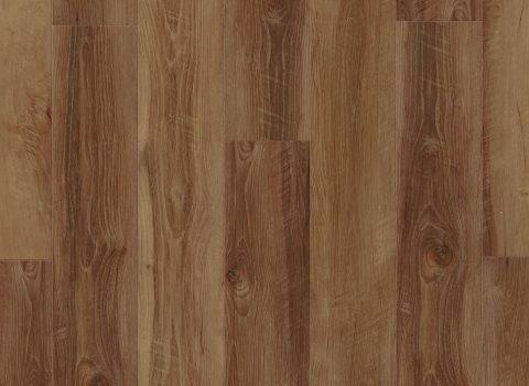 VV012-00762 Mornington Oak