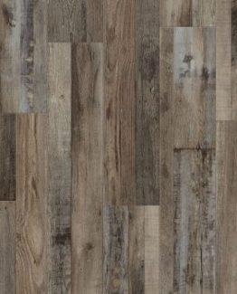 VV012-00765 Aden Oak