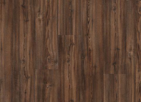 VV017-01006 Alamitos Pine