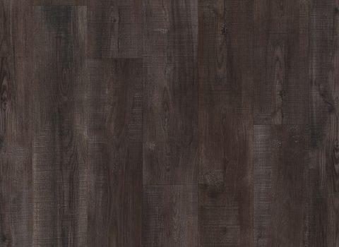 VV017-01007 Bristol Oak