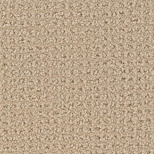 Santa Monica By Dreamweaver 9 Colors Myers Carpet Of