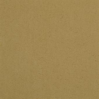 583 Parchment