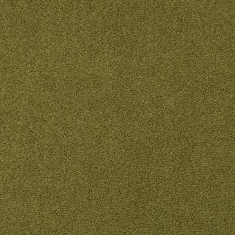 740 Olive