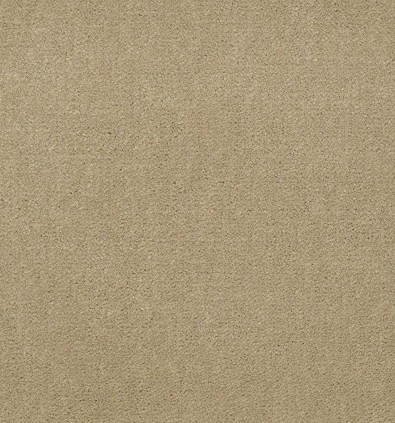 56120 Parchment