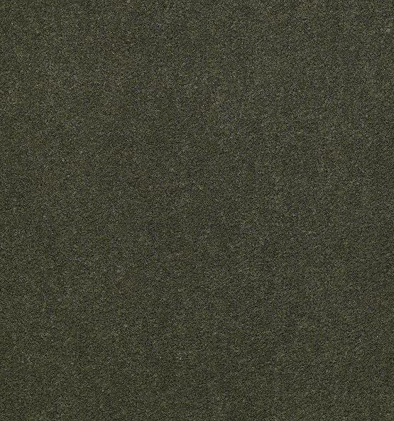 56314 Thyme