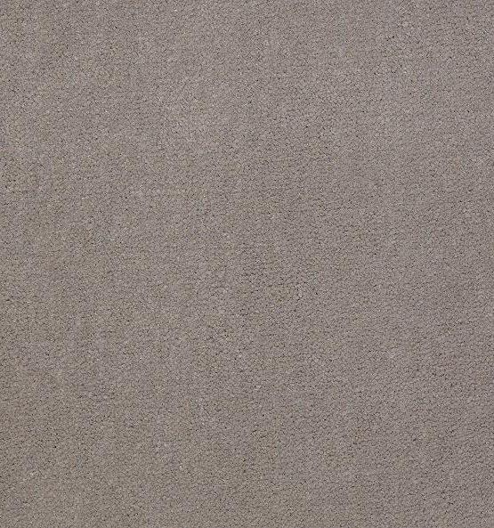 56510 Gray Hare