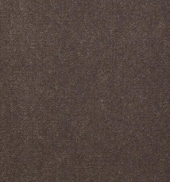 56595 Sandy Taupe