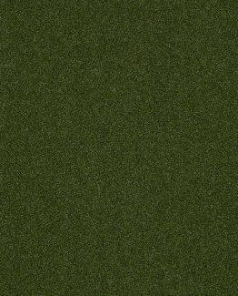 00300 Green
