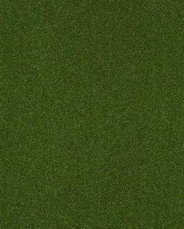 00301 Green