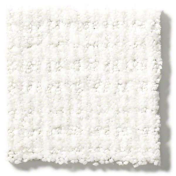 Sensible Now By Shaw 20 Colors Myers Carpet Of Dalton